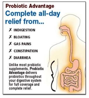 digestion_clp_diagram