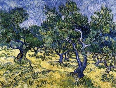 van gogh olive tree